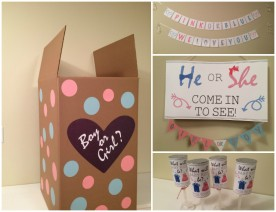 Boy or Girl? Gender Reveal