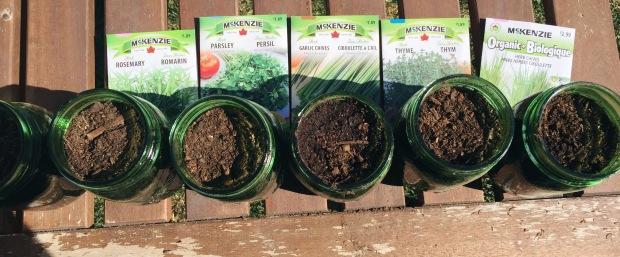 DIY Herb Garden with Mason Jars